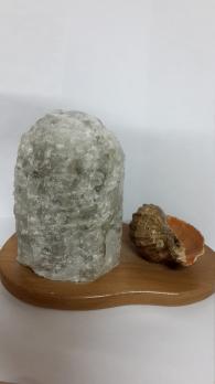 Ракушка лампа соленая, 1,8кг.